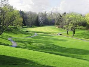 golf-course-300x225
