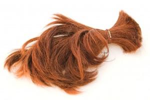 hair-300x199