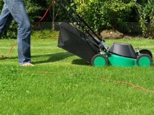 lawnmower lawn mower