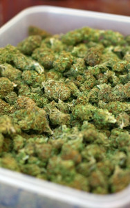 mary-jane-marijuana-pot-reefer-weed-188x300